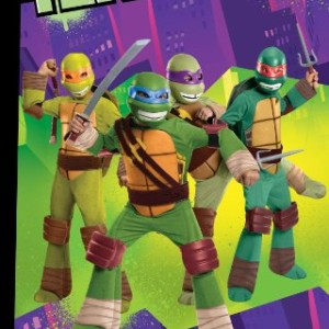 Teenage-Mutant-Ninja-Turtles-Leonardos-Katana-0-0